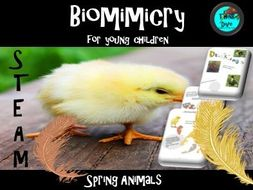 STEAM - Spring Animals & Biomimicry Lapbook