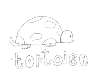 Tortoise: Animals and Pets