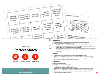 Perfect Match (Valentine's Mystery)