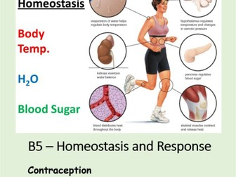 NEW AQA BIOLOGY GCSE - HOMEOSTASIS and RESPONSE - Lesson 13 – Contraception