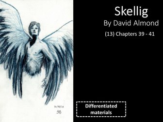 KS3: Skellig (13) Chapters 39-41