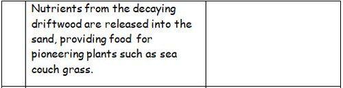Sand-dune-formation-sentences---2-sets.docx
