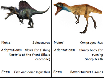 Dinosaur food chains
