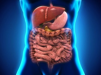 BTEC Applied Science 2016 Unit 8, Digestive System -Physiology of Human Body Systems,