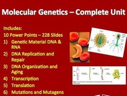 Molecular Genetics Unit - PowerPoint Lessons, Notes, Worksheets & Assessments