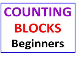 Counting Blocks 4 Worksheets