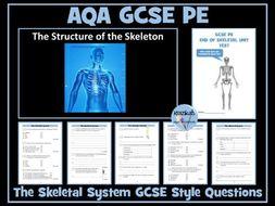 AQA GCSE PE The Skeletal System - End of Unit Test