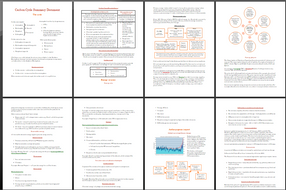 The-Carbon-Cycle-and-Energy-Security-summary-document.pdf