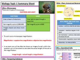 Edexcel Biology CB1 Revision Summary Worksheet