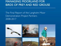 Managing Moorland for Birds of Prey and Red Grouse