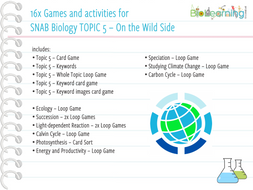 16 x Games and activities for SNAB TOPIC 5 - On the Wild Side