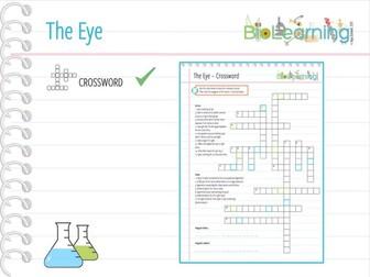 The Eye - Crossword (KS3/KS4)
