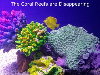 Our Disappearing Coral Reefs #GoogleExpeditions