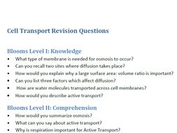 Cell Transport Questions Categorized According to Blooms Taxonomy