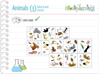 Safari & wild animals - CARD GAME