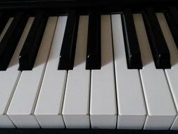 Scale or chord maps blank keyboard diagrams