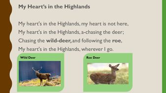 My-Heart's-in-the-Highlands-PPT.pptx