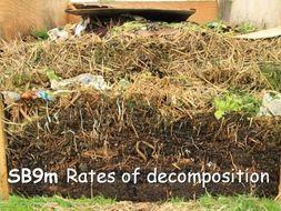Edexcel SB9m Rates of Decomposition