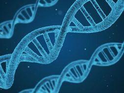 GCSE AQA Biology practical questions