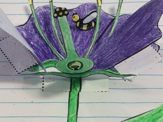 Plant reproduction, parts of the flower (cross section)  3D foldable (interactive notebook)