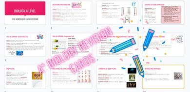 Biology-genetics-revison-cards.pdf