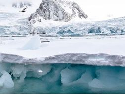 Arctic Themed Drama Lesson Plan for Year 4-6