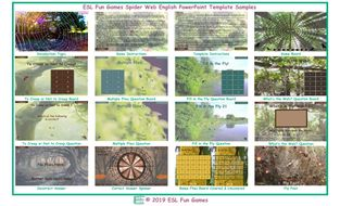 Spider-Web-English-PowerPoint-Game-Template.pptx