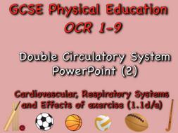 GCSE OCR PE (1.1d/e) - Double circulatory system PowerPoint