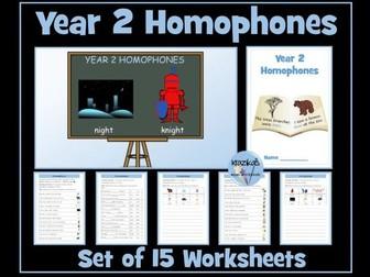 Year 2 Homophones Worksheets