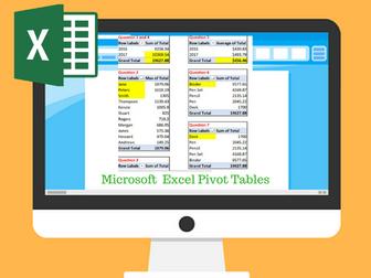 Excel Pivot Table Exercise / Task