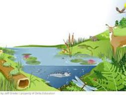 abiotic and biotic factors by archer25 teaching resources tes