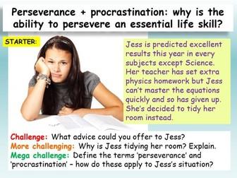 Perseverance + Procrastination