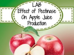 Lab - The Effect of Pectinase on the Production of Apple Juice (Enzyme Function)