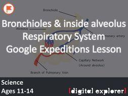 Bronchioles & alveoli #GoogleExpeditions Lesson