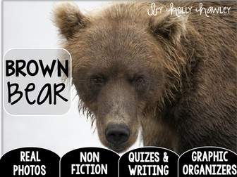 Brown Bear-A Research Project- US Version
