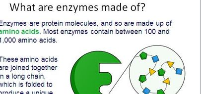 are enzymes made of proteins