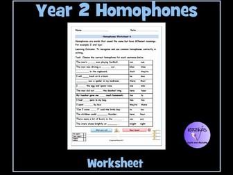 Homophones: Year 2 Homophones Worksheet