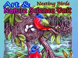 """Nesting Birds"" - Art & Nature Science Unit #2"