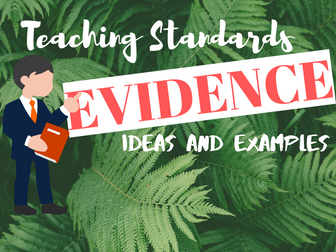 Evidence for Teaching Standards Ideas (Training/ NQT Year)