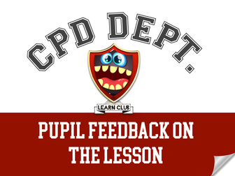 Pupil Feedback on the Lesson