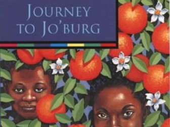 Journey to Jo'burg Reading Comprehension (after chapter 7 - Mma)