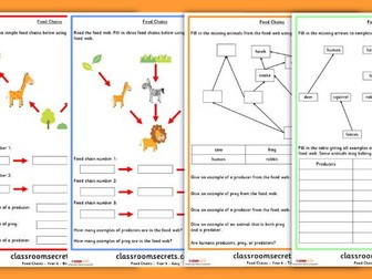 Food Chains and Food Webs Year 4 Science Worksheets
