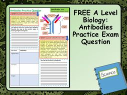 FREE A Level Biology Antibodies Practice Exam Question
