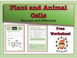 KS4 Plant and Animal Cells Structure and Differences ...