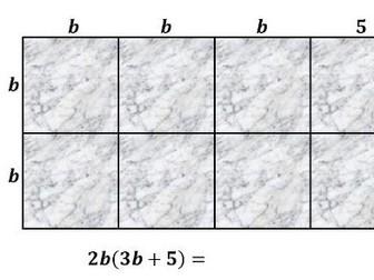 ★★★ Expansion, Factorisation & Algebraic Area Investigation ★★★