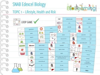 SNAB Biology Topic 1: Lifestyle, Health and Risk - Loop Game