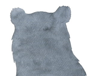 Bear graphic