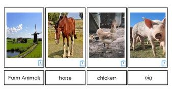 Farm-Animals.pdf