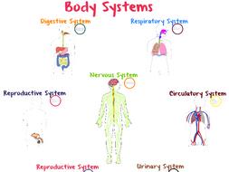 Body Systems Prezi (NGSS)