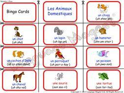 French Pets Bingo Game